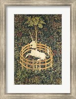 Framed Unicorn in Captivity
