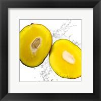 Framed Mango Splash