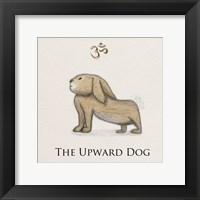 Framed Bunny Yoga,  Upward Dog Pose