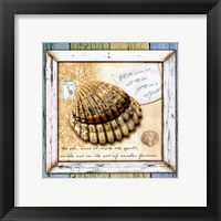 Framed Sea Treasures V