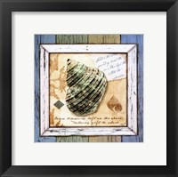 Framed Sea Treasures VI