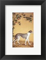 Framed Greyhound by Bamboo