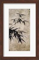 Framed Xia Chang- Ink Bamboo