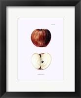 Apple II Framed Print