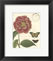 Small Vintage Floral III Framed Print