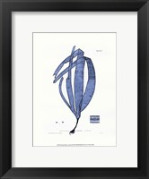 Nature Print in Aqua II Framed Print