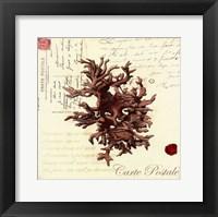 Small Romance du Mer III Framed Print