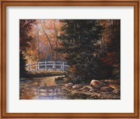 Framed Foot Bridge in the Woods