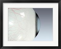Close-up of the human eyeball side view Framed Print