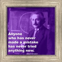 Framed Einstein Try Something New Quote