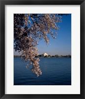 Framed Jefferson Memorial Washington, D.C. USA