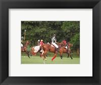 Framed Polo Umpire