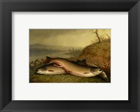 Framed Brooklyn Museum - Trout - Walter M. Brackett