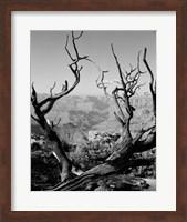 Framed USA, Arizona, Grand Canyon, Colorado River seen from South Rim