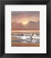 Framed Ocean Sunset