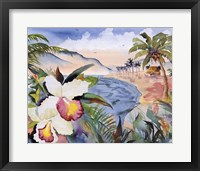 Framed Hawaiian Orchids