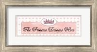 Framed Princess Sleeps Here - mini