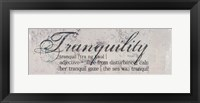 Framed Tranquility Defined - mini
