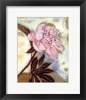 Framed Pink Peony Blossom