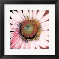 Sunshine Flower I Framed Print