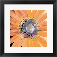 Sunshine Flower IV Framed Print