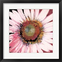 Framed Sunshine Flower I