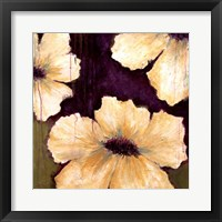 Framed Blooms I