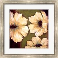 Framed Blooms II