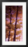 Framed Purple Wood I