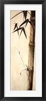 Framed Sepia Guadua Bamboo II
