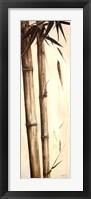Framed Sepia Guadua Bamboo I