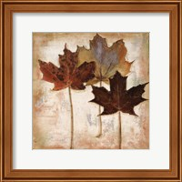 Framed Nautral Leaves III