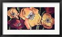 Framed Dazzlin poppies II