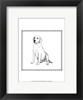 Framed Best in Show XII