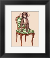 Framed Pampered Pet IV