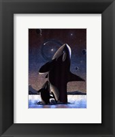 Framed Orcas in the Sky