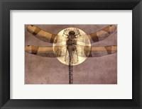 Full Moon Serenade II Framed Print