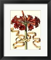 Framed Ribbon Florals I