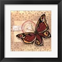 Le Papillon I Framed Print