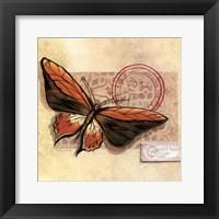 Le Papillon II Framed Print
