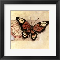 Framed Le Papillon III