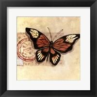 Le Papillon III Framed Print