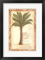 Framed Palmetto Palm