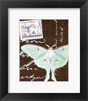 Framed Le Papillon Script I
