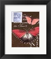 Le Papillon Script II Framed Print