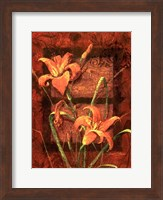 Framed Day Lily II