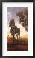 Framed Tall Trees I