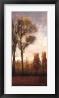 Framed Tall Trees II