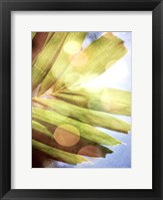 Tropical Daydream I Framed Print