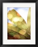 Framed Tropical Daydream II